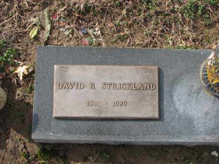 STRICKLAND, DAVID B. - Poinsett County, Arkansas | DAVID B. STRICKLAND - Arkansas Gravestone Photos