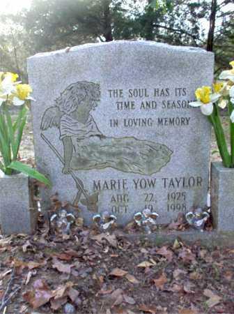 TAYLOR, MARIE - Poinsett County, Arkansas | MARIE TAYLOR - Arkansas Gravestone Photos