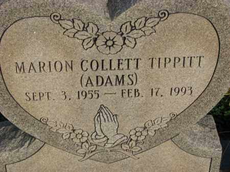 TIPPITT (ADAMS), MARION COLLETT - Poinsett County, Arkansas | MARION COLLETT TIPPITT (ADAMS) - Arkansas Gravestone Photos