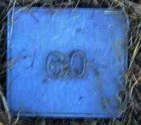 UNKNOWN, MARKER #60 - Poinsett County, Arkansas   MARKER #60 UNKNOWN - Arkansas Gravestone Photos