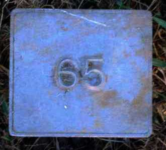 UNKNOWN, MARKER #65 - Poinsett County, Arkansas | MARKER #65 UNKNOWN - Arkansas Gravestone Photos