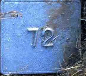 UNKNOWN, MARKER #72 - Poinsett County, Arkansas   MARKER #72 UNKNOWN - Arkansas Gravestone Photos