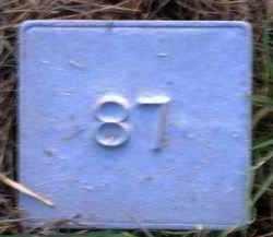 UNKNOWN, MARKER #87 - Poinsett County, Arkansas | MARKER #87 UNKNOWN - Arkansas Gravestone Photos