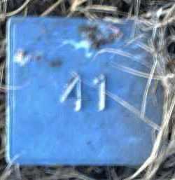 UNKNOWN, MARKER #41 - Poinsett County, Arkansas | MARKER #41 UNKNOWN - Arkansas Gravestone Photos