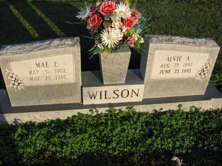 WILSON, MAE E. - Poinsett County, Arkansas | MAE E. WILSON - Arkansas Gravestone Photos
