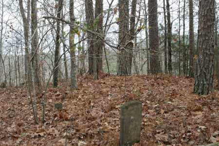 *OVERVIEW,  - Polk County, Arkansas |  *OVERVIEW - Arkansas Gravestone Photos