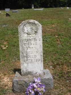 CAGLE, ELIZABETH C - Polk County, Arkansas | ELIZABETH C CAGLE - Arkansas Gravestone Photos