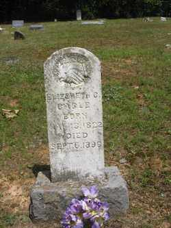 WEAVER CAGLE, ELIZABETH C - Polk County, Arkansas | ELIZABETH C WEAVER CAGLE - Arkansas Gravestone Photos