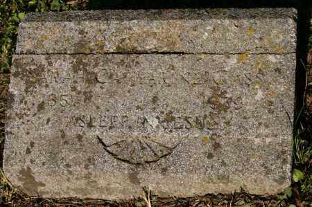 GASS, SARAH CATHARINE - Polk County, Arkansas | SARAH CATHARINE GASS - Arkansas Gravestone Photos