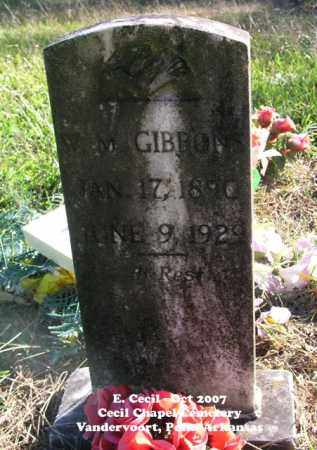 GIBBONS, W.M. - Polk County, Arkansas | W.M. GIBBONS - Arkansas Gravestone Photos