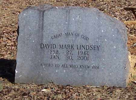 LINDSEY, DAVID MARK - Polk County, Arkansas | DAVID MARK LINDSEY - Arkansas Gravestone Photos