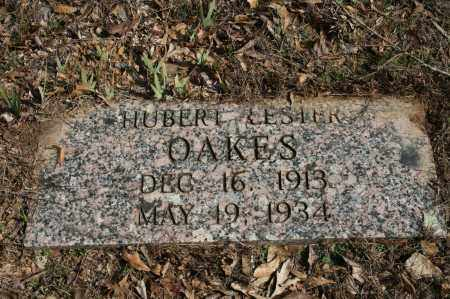 OAKES, HUBERT LESTER - Polk County, Arkansas | HUBERT LESTER OAKES - Arkansas Gravestone Photos