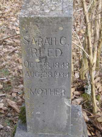 REED, SARAH - Polk County, Arkansas | SARAH REED - Arkansas Gravestone Photos