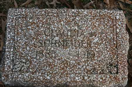 SCHNEIDER, CLAUDIA - Polk County, Arkansas | CLAUDIA SCHNEIDER - Arkansas Gravestone Photos