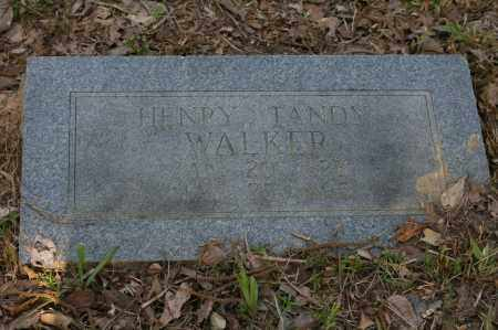WALKER, HENRY TANDY - Polk County, Arkansas | HENRY TANDY WALKER - Arkansas Gravestone Photos