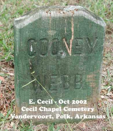 WEBB, COONEY - Polk County, Arkansas | COONEY WEBB - Arkansas Gravestone Photos