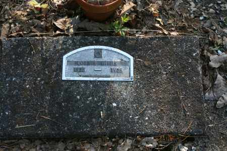 WILLIS, CORA E. - Polk County, Arkansas | CORA E. WILLIS - Arkansas Gravestone Photos