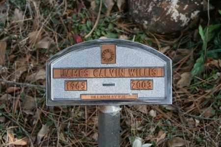 WILLIS, JAMES CALVIN - Polk County, Arkansas | JAMES CALVIN WILLIS - Arkansas Gravestone Photos