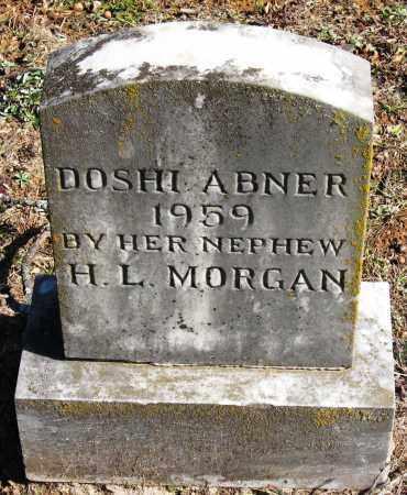 ABNER, DOSHI - Pope County, Arkansas | DOSHI ABNER - Arkansas Gravestone Photos