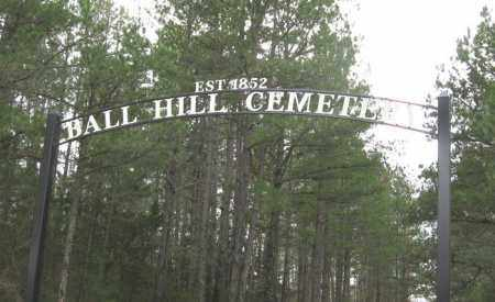 *ENTRANCE, . - Pope County, Arkansas | . *ENTRANCE - Arkansas Gravestone Photos