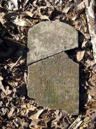 BROWN, WILLIAM E - Pope County, Arkansas   WILLIAM E BROWN - Arkansas Gravestone Photos