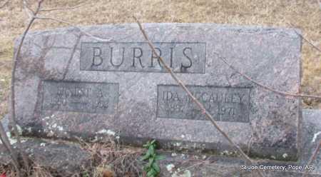 MCCAULEY BURRIS, IDA - Pope County, Arkansas | IDA MCCAULEY BURRIS - Arkansas Gravestone Photos