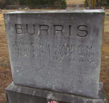 BURRIS, GEORGE WASHINGTON - Pope County, Arkansas | GEORGE WASHINGTON BURRIS - Arkansas Gravestone Photos