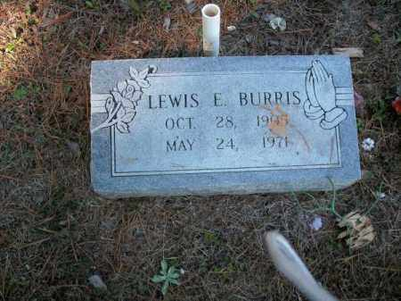 BURRIS, LEWIS E - Pope County, Arkansas | LEWIS E BURRIS - Arkansas Gravestone Photos
