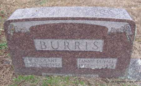 DUVALL BURRIS, FANNIE - Pope County, Arkansas | FANNIE DUVALL BURRIS - Arkansas Gravestone Photos