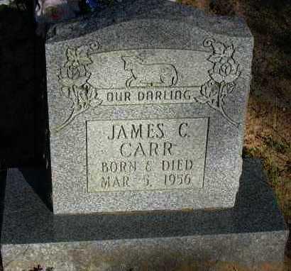 CARR, JAMES C - Pope County, Arkansas | JAMES C CARR - Arkansas Gravestone Photos
