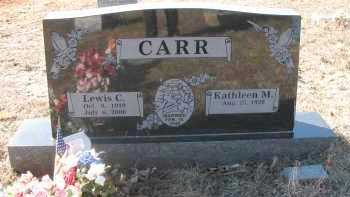 CARR, LEWIS - Pope County, Arkansas | LEWIS CARR - Arkansas Gravestone Photos