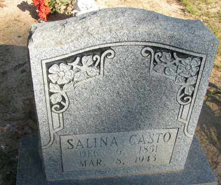 CASTO, SALINA - Pope County, Arkansas | SALINA CASTO - Arkansas Gravestone Photos