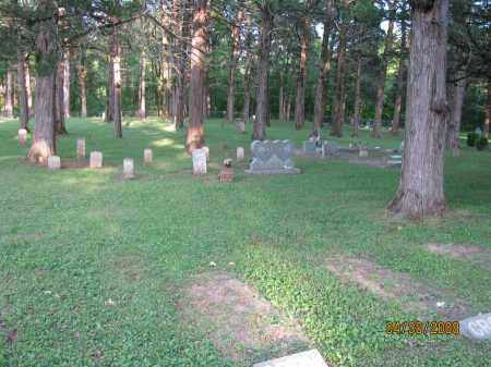 *FORKS OF CREEK CEMETERY VIEW,  - Pope County, Arkansas |  *FORKS OF CREEK CEMETERY VIEW - Arkansas Gravestone Photos