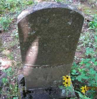 COTTON, ELIZABETH - Pope County, Arkansas | ELIZABETH COTTON - Arkansas Gravestone Photos