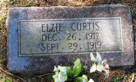 CURTIS, ELZIE - Pope County, Arkansas | ELZIE CURTIS - Arkansas Gravestone Photos