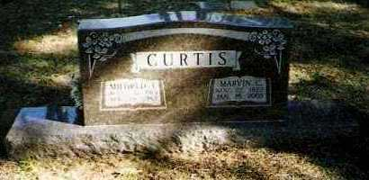 CURTIS, MILDRED T - Pope County, Arkansas | MILDRED T CURTIS - Arkansas Gravestone Photos