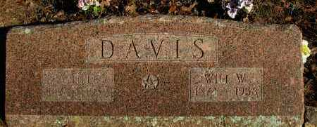 DAVIS, WILL W - Pope County, Arkansas | WILL W DAVIS - Arkansas Gravestone Photos