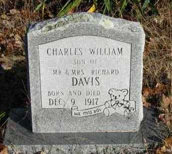 DAVIS, CHARLES WILLIAM - Pope County, Arkansas | CHARLES WILLIAM DAVIS - Arkansas Gravestone Photos