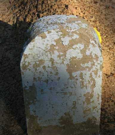 DAWKINS, OLA - Pope County, Arkansas | OLA DAWKINS - Arkansas Gravestone Photos