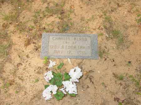 EAKIN, CHARLES BLYNN - Pope County, Arkansas | CHARLES BLYNN EAKIN - Arkansas Gravestone Photos