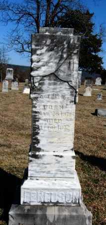 FERGUSON, W  GUY - Pope County, Arkansas   W  GUY FERGUSON - Arkansas Gravestone Photos