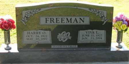 FREEMAN, HARRY O - Pope County, Arkansas | HARRY O FREEMAN - Arkansas Gravestone Photos