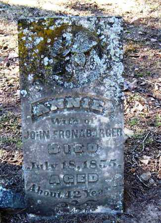FRONABARGER, ANNIE - Pope County, Arkansas | ANNIE FRONABARGER - Arkansas Gravestone Photos