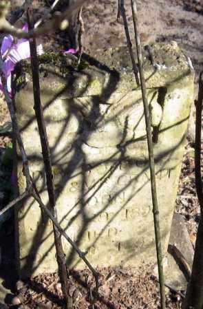 GRANT, INFANT SON - Pope County, Arkansas | INFANT SON GRANT - Arkansas Gravestone Photos