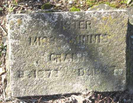 GRANT, MINNIE - Pope County, Arkansas | MINNIE GRANT - Arkansas Gravestone Photos