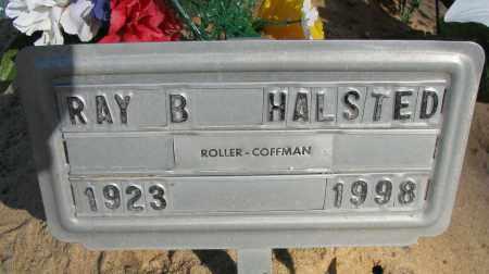 HALSTED, RAY B - Pope County, Arkansas | RAY B HALSTED - Arkansas Gravestone Photos