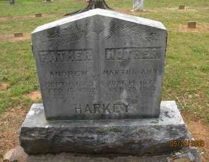 HARKEY, ANDREW - Pope County, Arkansas | ANDREW HARKEY - Arkansas Gravestone Photos