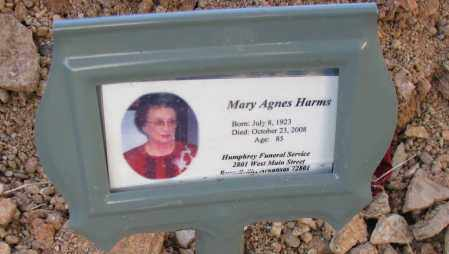 HARMS, MARY AGNES - Pope County, Arkansas | MARY AGNES HARMS - Arkansas Gravestone Photos