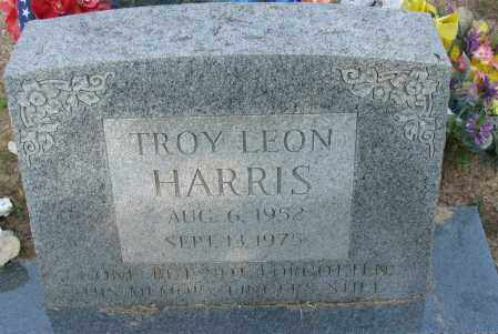 HARRIS, TROY LEON - Pope County, Arkansas | TROY LEON HARRIS - Arkansas Gravestone Photos
