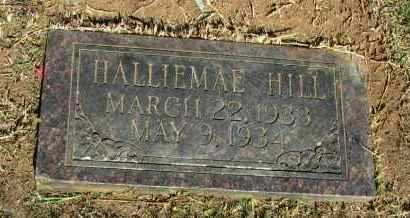 HILL, HALLIEMAE - Pope County, Arkansas | HALLIEMAE HILL - Arkansas Gravestone Photos